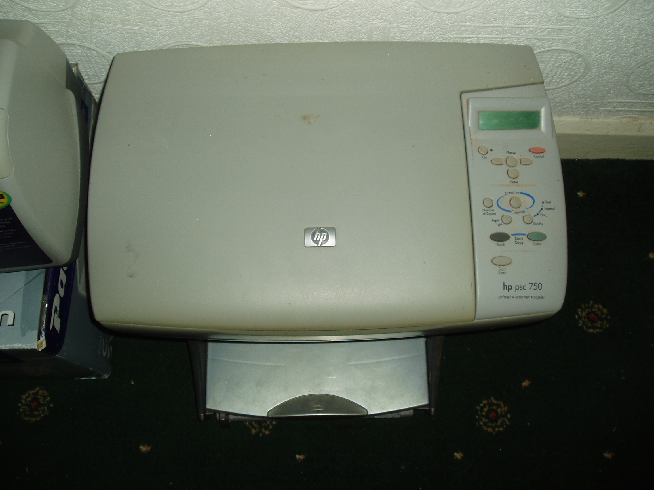 P1011824.JPG