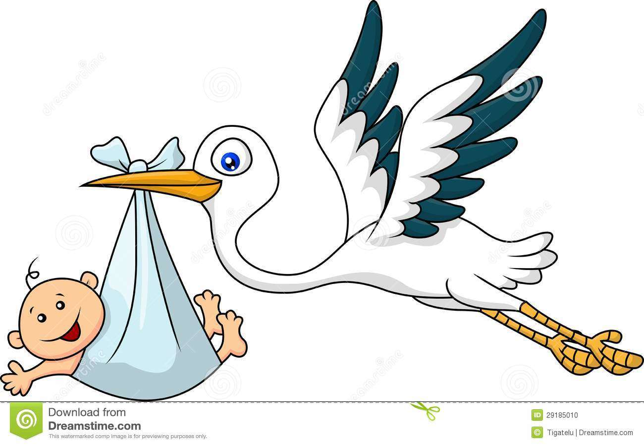stork-carrying-baby-29185010.jpg