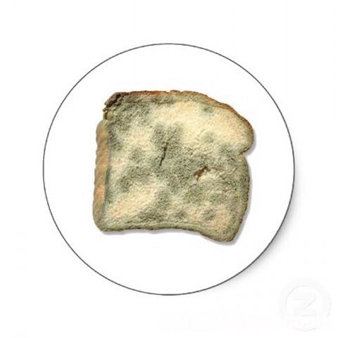 stale_bread_sticker-p217377541770273142qjcl_400.jpg