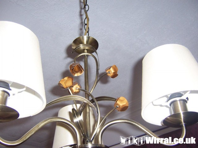 light fitting bronze flowers.jpg