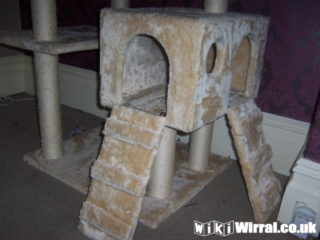 Large Plush Cat Towers Scratchposts Beds For Sale