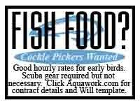 Fishfood.JPG